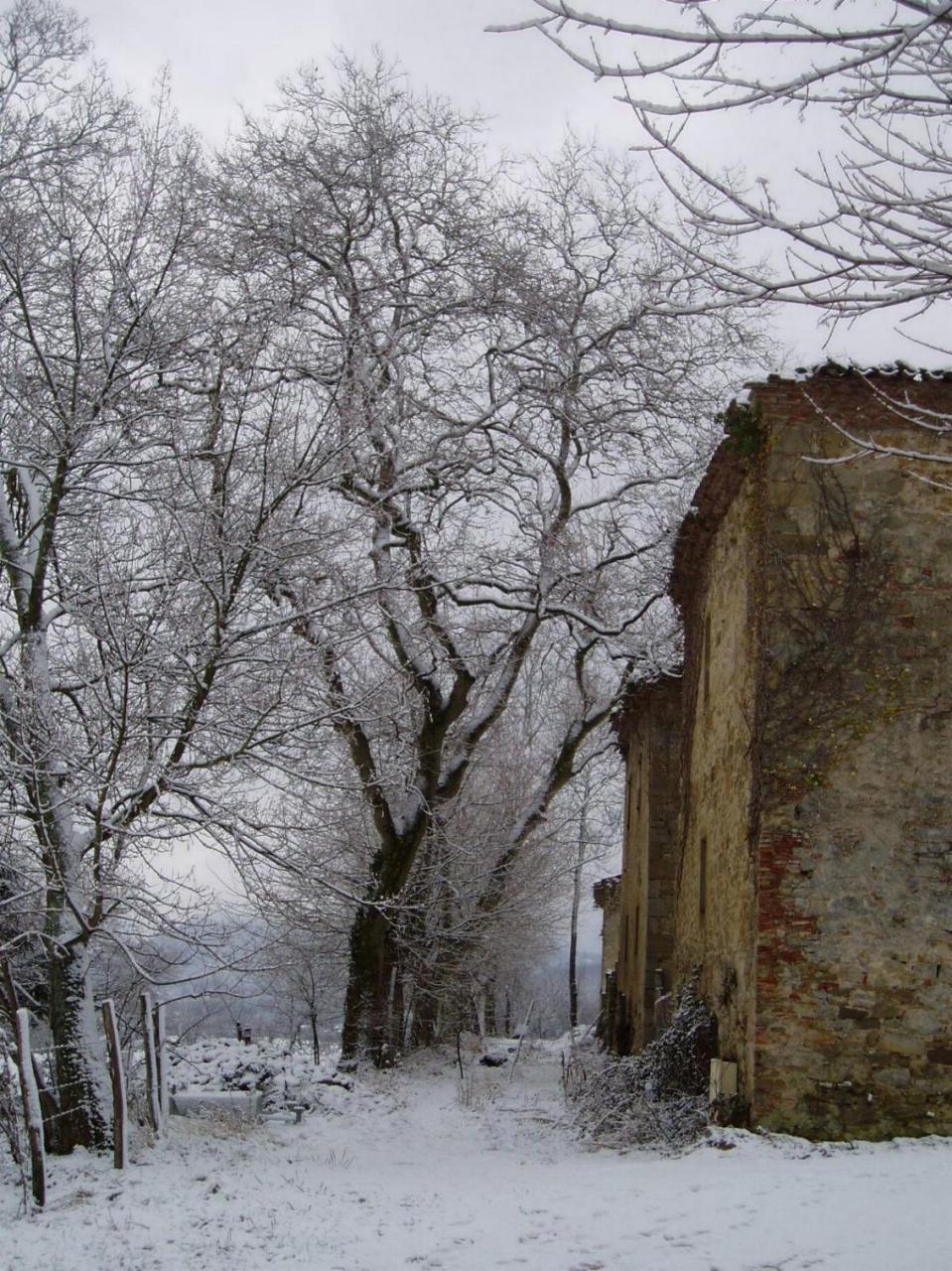 LAGARDE - château enneigé 1