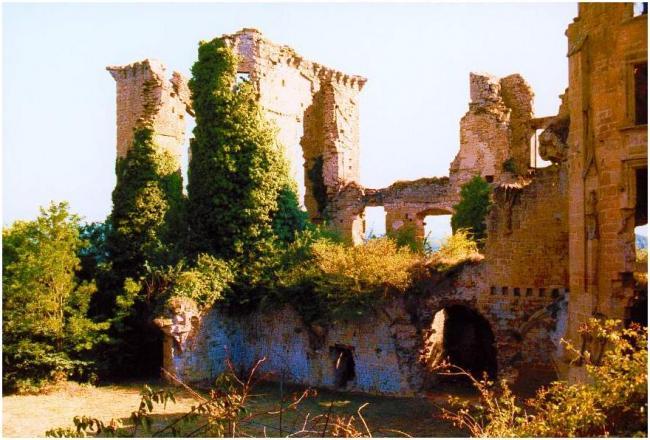 LAGARDE - Château en 1986