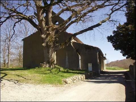 FAJOU - Sa chapelle et son chêne