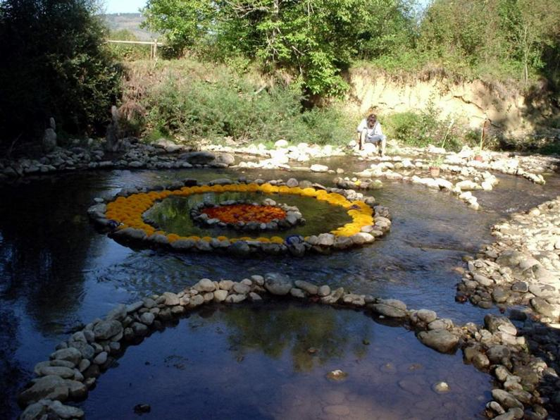 LIEURAC - Jardin Extraordinaire 2006b