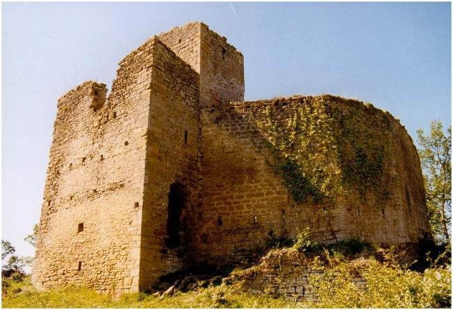 LAGARDE - Château de Montaragou