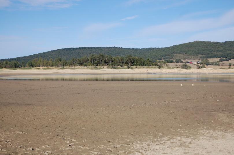 Lac 005